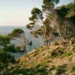 Fincahotels im Hinterland: Das andere Mallorca