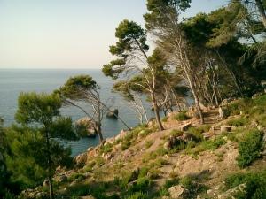 Steilküste bei Deia